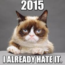 Grumpy Cat 2015